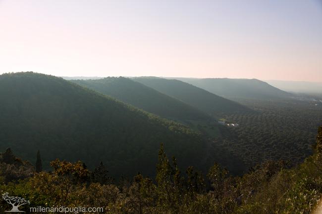 Trekking panoramico lungo le colline di Ostuni e Cisternino