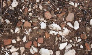 Cocci di vasellame di età del bronzo sparsi sul terreno.