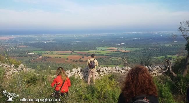 Escursione a Cisternino tra boschi e terrazze panoramicheMillenari ...